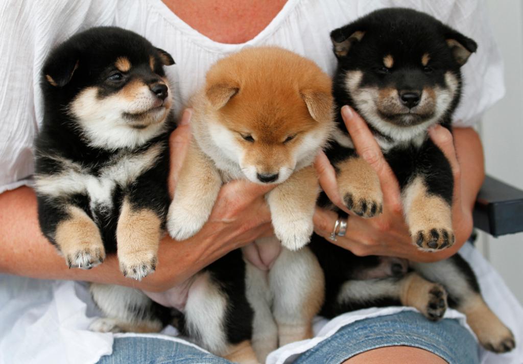 Mimi, Astrid och Smille