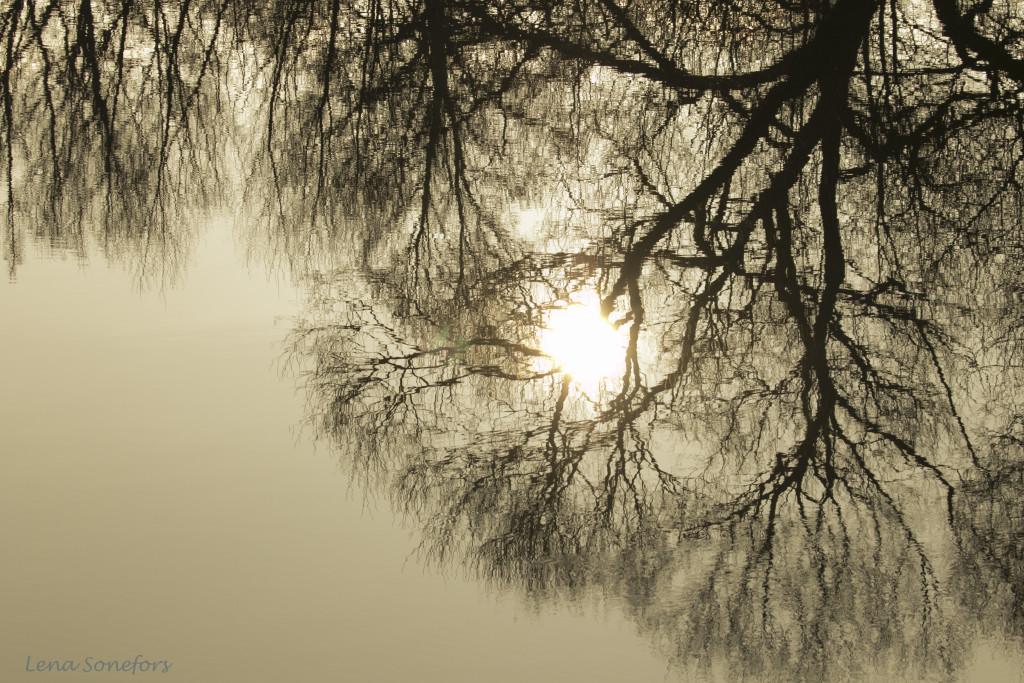 Sol i vatten